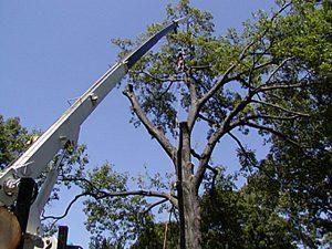 18-Ton Altec Crane
