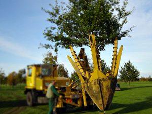 Vermeer Tree Spade